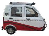 Высокоскоростной электрический автомобиль для пассажира