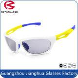 Vidrios con estilo populares de Eyewear Sun de las gafas de sol de los deportes al aire libre del surtidor del Amazonas Dropshipping