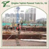 중국에 있는 Marine Plywood 의 Concrete Plywood Company 또는 공장