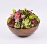 Plantas suculentas mezcladas artificiales en el pote de papel (S / L) para la decoración
