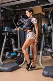 方法デザインカートンパターン体操の摩耗の適性の圧縮のスポーツ・ウェア