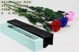 Mirada de la pista preservada natural de Rose de las rosas naturales de las flores para la decoración de la boda