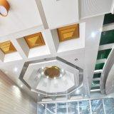 Panel de aluminio muro cortina de paneles de metal del techo artística