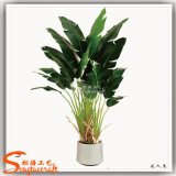 2015 China por mayor decorativa artificial Bonsai Banana Tree Plant