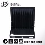 lumière d'inondation du projecteur DEL de l'ÉPI 10W avec du CE (IP65)