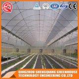 Da película vegetal do PE da flor da agricultura casa verde para plantas Growing