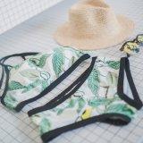 Nieuw Ontwerp Xxx het Hete Jonge Meisje Swimwear van de douane van de Bikini van het Geslacht