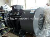 асинхронный двигатель 220V/380V/415V/660V 50Hz/60Hz трехфазный с IP55 и изоляцией типа f
