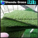 16800densityとの庭の草人工的な20mm