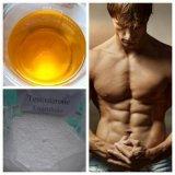 Testosterona esteróide Enanthate da hormona para o Bodybuilding