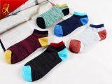 Preiswerter Preis-Mann-Sport-Knöchel trifft multi Farben-Baumwollsocken hart