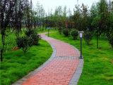 Iluminación ligera solar del paisaje del jardín de la integración con la FCC del Ce