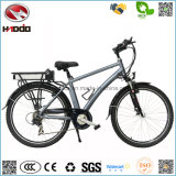Китай Manufacure 250W продает электрический корабль оптом Riding E-Bike путешествия Pedalgo велосипеда города батареи лития Bike дороги