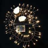 AA Battery Operated 2m 80LED Cuivre fil Seed Lumières Firecracker blanc chaud