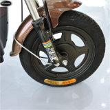 электрические Bikes 48V-350W при одобренный Ce (CW-24)