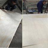 Irradiar pino contrachapado de chopo Core para el mercado de la construcción Rusia