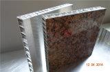 Подгоняйте алюминиевые панели сота для плакирования стены