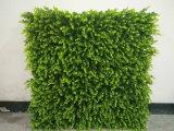 Decoração artificial da tampa da parede das flores de parede das plantas do projeto novo