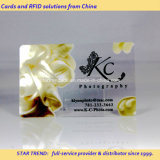 풀 컬러 명함을%s 투명한 PVC Magetic 줄무늬 카드