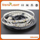 2700k-6000k SMD 2835 LED flexibles Streifen-Licht für Torbogen