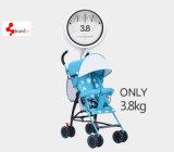 Buntes Baby Strolle, netter Baby-Buggy, faltender Spaziergänger