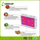 300W-1200W l'alto potere LED si sviluppa chiaro per l'illuminazione Flowering idroponica della serra