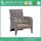 O sofá do Rattan ajustou-se com mobília do jardim do coxim (o estilo mágico)