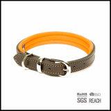 De duurzame Sterke Halsband van het Huisdier van het Leer met het Opvullen van EVA