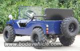 판매를 위한 새로운 110/150cc 소형 지프를 예시하십시오