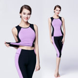 280GSM 85% Nylon 15% Spandex Mulheres Sportswear Sports Suit