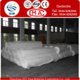 Geotextile 200G/M2 пробитый иглой Nonwoven защищает Geotextle