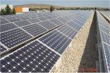 Système Solaire de Constructeurs, de Panneau Solaire Mono et Poly de 250W