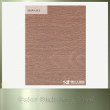 Kupfer-überzogenes Edelstahl-Blatt des Stempel-201 304 für Innendekoration