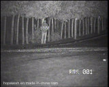 Full HD Onvif Cámara de visión nocturna por infrarrojos para 300m de detección