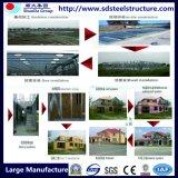 Edifícios isolados industriais inovativos das construções de aço
