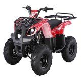 China 600cc 4X4 ATV para Cheap Sale