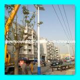 Panel arriba eficiente recargable sin necesidad de mantenimiento solar poste galvanizado caliente (GPA-DL-159) de RoHS del CE de las baterías de la luz de calle el mono