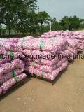 Nuovo sacchetto del raccolto 3p dell'aglio