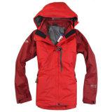 Aufgefüllte Ski-Jacke für Dame (A023)