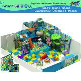 子供の運動場の屋内運動場の柔らかい運動場(H14-0907)