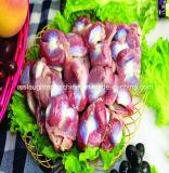 Heißes Verkaufs-Geflügel schlachten Gerät für Huhn