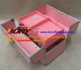El color de plata compone la caja de tren de aluminio