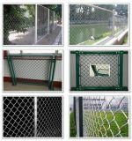 PVC et frontière de sécurité galvanisée de maillon de chaîne en stock