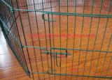 Metalldraht-Verwirrung-Rahmen für Huhn und Haustier