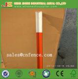 borne Shaped enchido pintado verde da cerca de 1.25lb T para a venda