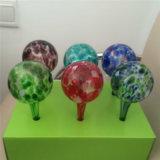 Globi di /Globes/Device/Water delle lampadine di vetro di innaffiatura della pianta