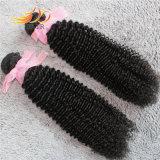 100%のペルーのバージンの毛のねじれたカール自然なカラー毛の織り方