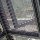 Schermo della finestra dello schermo della finestra della vetroresina/vetroresina di alta qualità/a buon mercato schermo della finestra della vetroresina