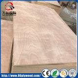 Roble rojo/ceniza/Okoume/madera contrachapada del anuncio publicitario de la base del álamo de la chapa del pino
