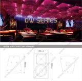 Dw-10 choisissent 10 pouces d'acoustique de système bidirectionnel du DJ